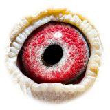 BE12-4153458_eye