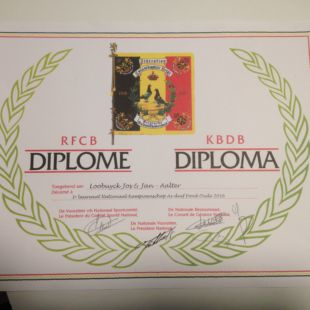 Diploma asduif