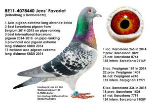Jens' Favoriet