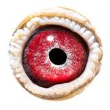BE10-4173714_eye