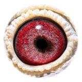 BE15-4008380_eye