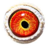 BE16-4118500_eye